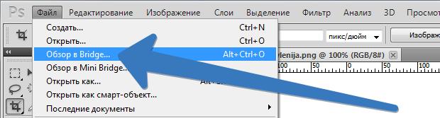 otkryt'_v_bridge