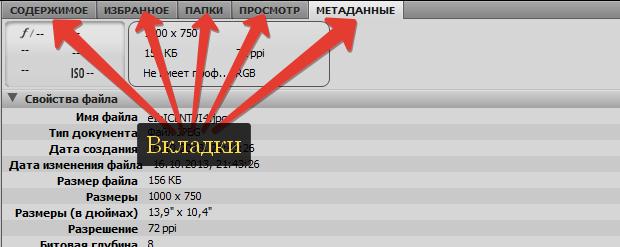 panel'_vkladok_Adobe_Bridge