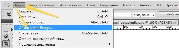 Komanda_obzor_v_Mini_Bridge