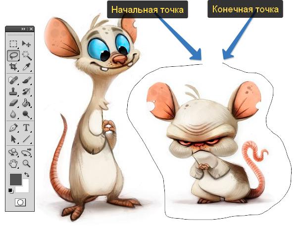 kak_pol'zovat'sja_instrumentom_lasso