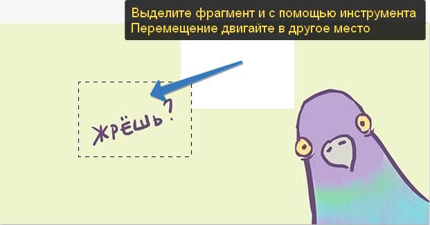 peremeshhenie_fragmenta_vydelennoj_oblasti