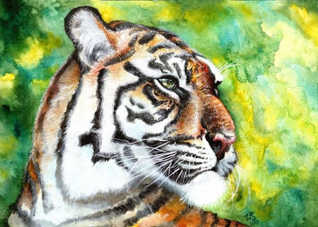 Рисунок тигра