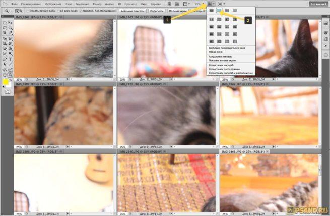 Как расположить в фотошопе все фотографии в сетке