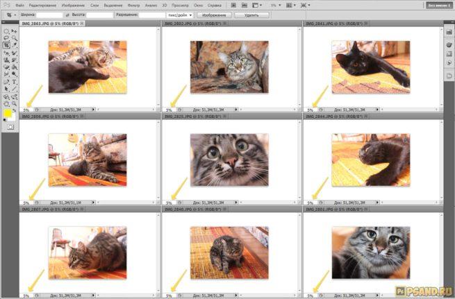 Открытие фотографие в фотошопе в заданном масштабе
