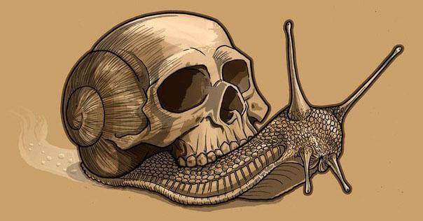 Улитка с панцырем в виде черепа