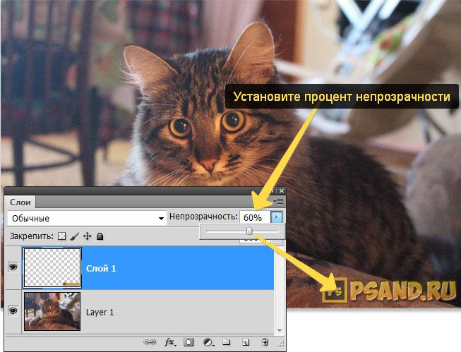 Добавление эффекта непрозрачности в фотошопе